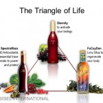Triangle of Life1 150x150 Sarcoidosis Natural Treatment Alternatives